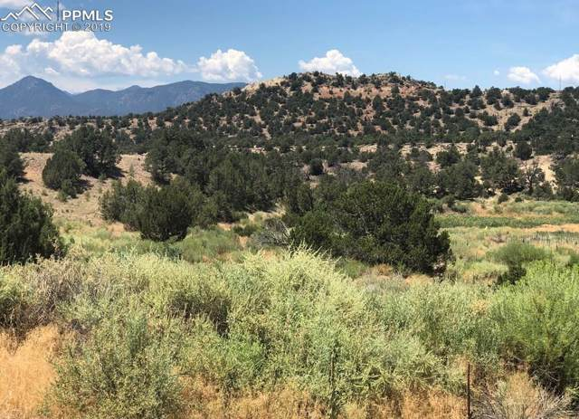 84 Star Ranch Road, Canon City, CO 81212 (#6693744) :: CC Signature Group