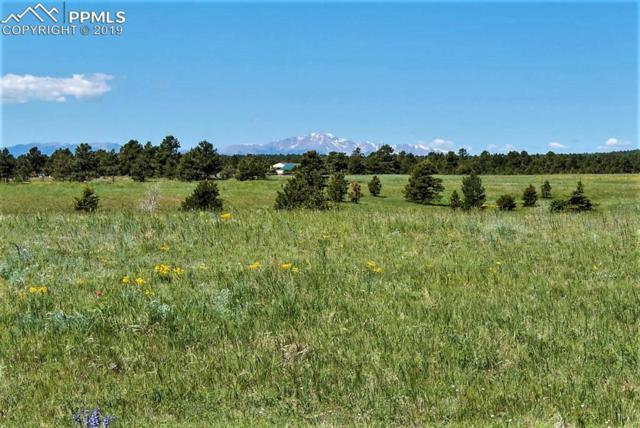 0 Eastonville Road, Elbert, CO 80106 (#6694827) :: Colorado Home Finder Realty
