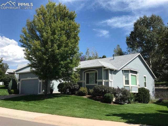 6708 Showhorse Court, Colorado Springs, CO 80922 (#6694912) :: 8z Real Estate
