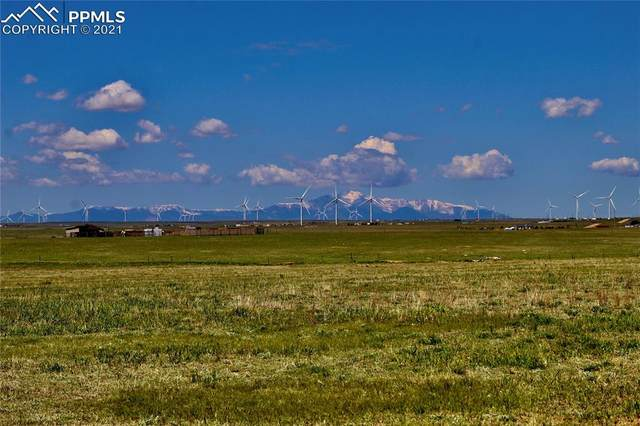 11630 Sals View, Calhan, CO 80808 (#6697920) :: Fisk Team, eXp Realty