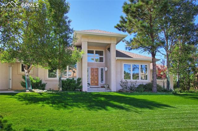 2555 Kinderhook Lane, Colorado Springs, CO 80919 (#6698216) :: 8z Real Estate