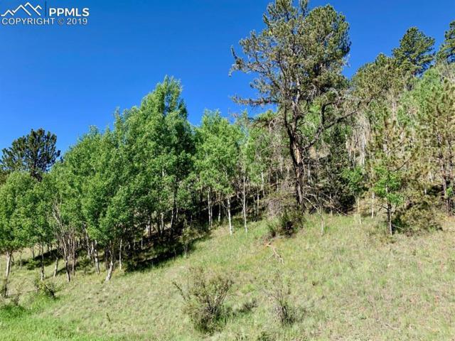 311 Beaver Pond Road, Divide, CO 80814 (#6698611) :: 8z Real Estate