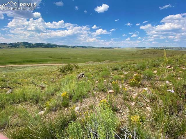 County Road 53, Hartsel, CO 80449 (#6699683) :: Tommy Daly Home Team