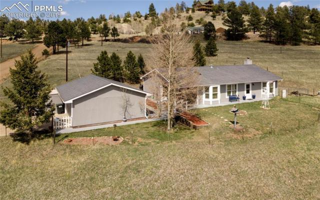 54 Dillon Lane, Florissant, CO 80816 (#6701633) :: Action Team Realty