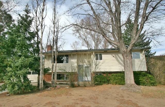 4635 Bella Drive, Colorado Springs, CO 80918 (#6704144) :: The Treasure Davis Team