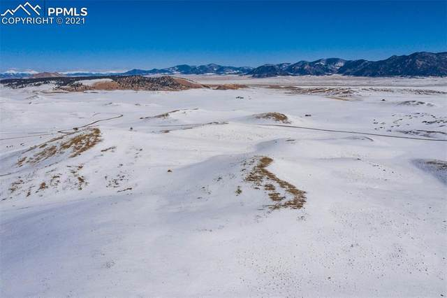 Lot 16 Canyon Ranch Road, Hartsel, CO 80449 (#6705550) :: The Treasure Davis Team | eXp Realty