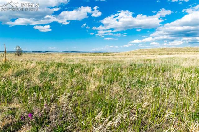 12055 Silver Concho Trail, Elbert, CO 80106 (#6707078) :: Action Team Realty