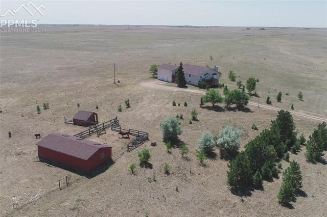 9425 Mulberry Road, Calhan, CO 80808 (#6708343) :: The Dunfee Group - Keller Williams Partners Realty