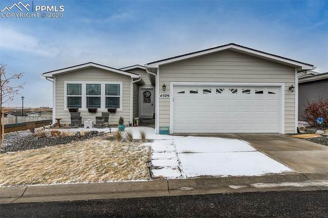 4509 Kingfisher Point, Colorado Springs, CO 80922 (#6715649) :: Finch & Gable Real Estate Co.