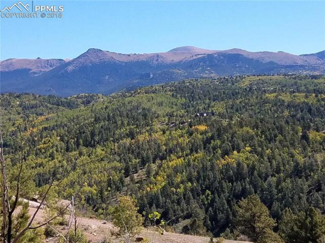 468 Golden Cycle Circle, Cripple Creek, CO 80813 (#6720124) :: The Peak Properties Group