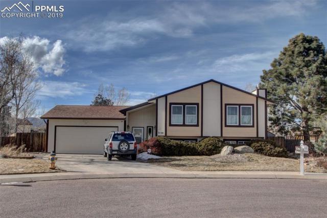 3150 Tiffany Terrace, Colorado Springs, CO 80920 (#6727616) :: Action Team Realty