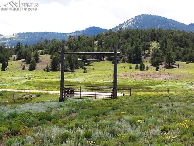 00 County 9 Highway, Guffey, CO 80820 (#6731313) :: 8z Real Estate