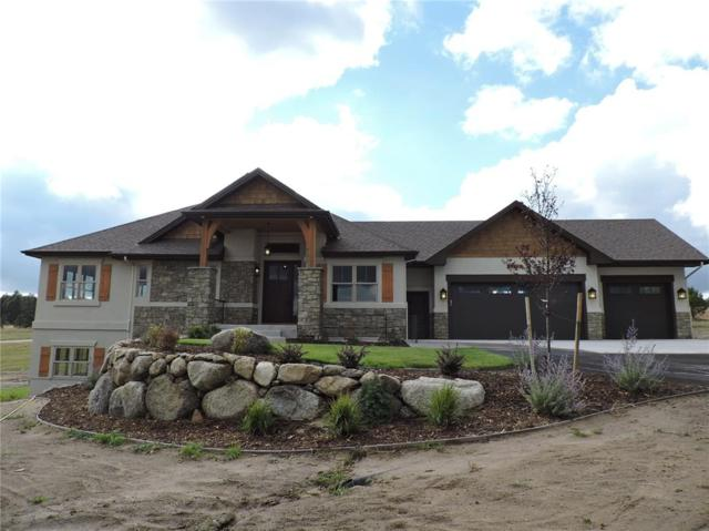 18762 Cherry Springs Ranch Drive, Monument, CO 80132 (#6733034) :: 8z Real Estate