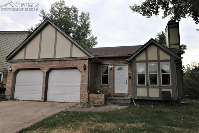 3355 Ash Hopper Lane, Colorado Springs, CO 80906 (#6734829) :: Venterra Real Estate LLC