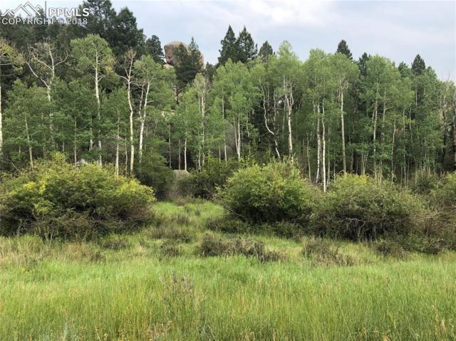 695 Pinon Lane, Florissant, CO 80816 (#6735314) :: Action Team Realty