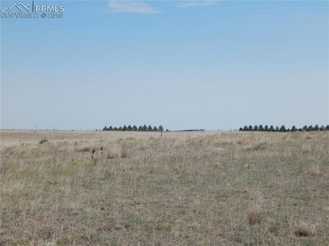 000 County 137 Road, Simla, CO 80835 (#6737056) :: Jason Daniels & Associates at RE/MAX Millennium