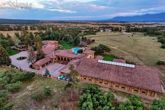 12795 Oak Cliff Way, Colorado Springs, CO 80908 (#6739216) :: Venterra Real Estate LLC