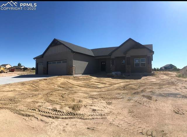 10125 Triborough Trail, Falcon, CO 80831 (#6739664) :: Tommy Daly Home Team