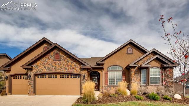 13098 Crane Canyon Loop, Colorado Springs, CO 80921 (#6743381) :: Harling Real Estate