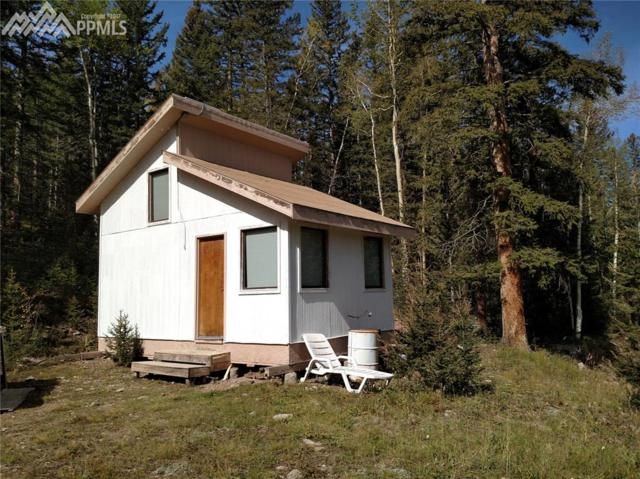 10733 Highway 67 Highway, Cripple Creek, CO 80813 (#6747498) :: 8z Real Estate