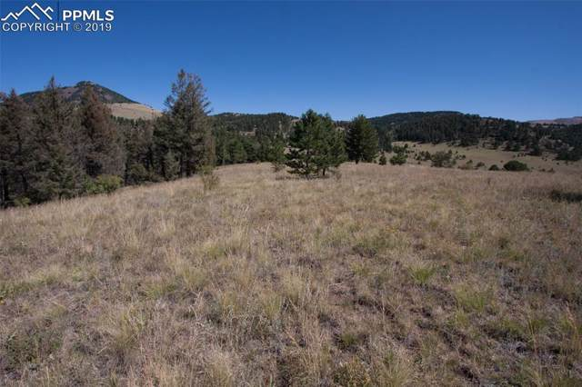 343 Moffat Drive, Cripple Creek, CO 80813 (#6752558) :: Tommy Daly Home Team