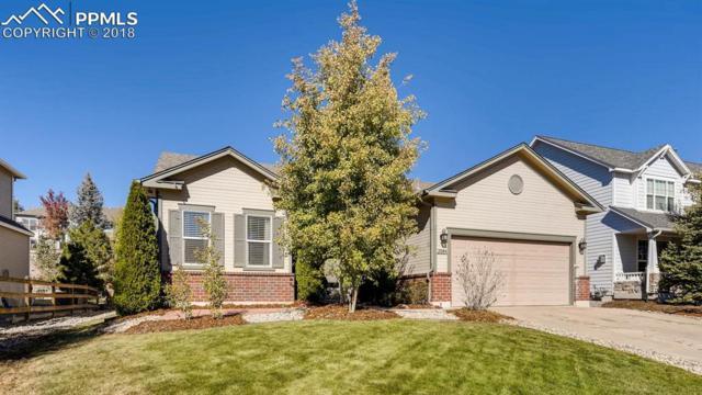 2084 Coldstone Way, Colorado Springs, CO 80921 (#6754602) :: 8z Real Estate
