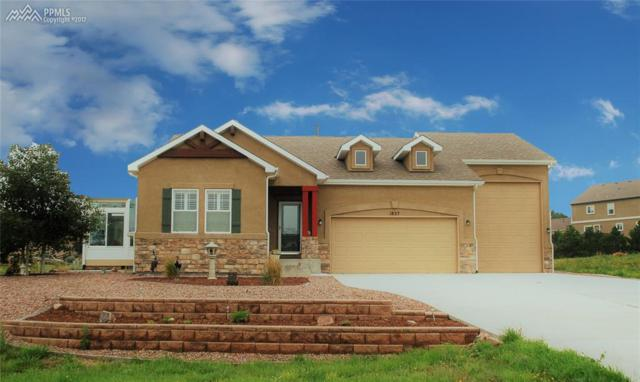 1825 Old Antlers Way, Monument, CO 80132 (#6756013) :: 8z Real Estate