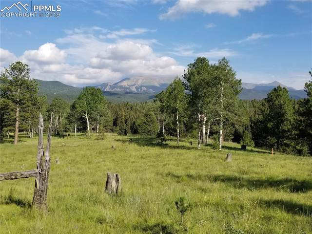 TBD Highway 67 Highway, Divide, CO 80814 (#6757744) :: The Daniels Team