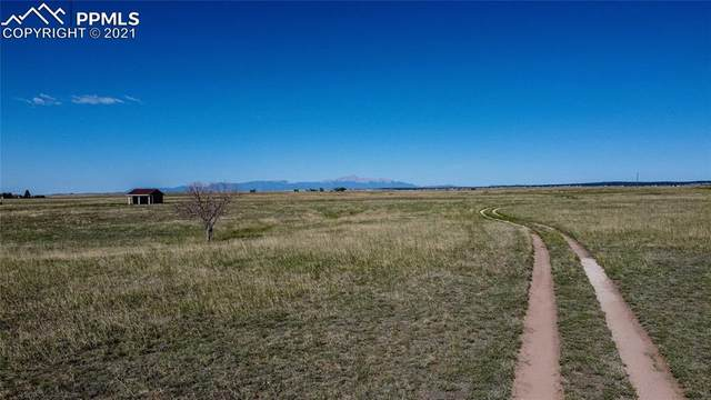 16846 Murphy Road, Peyton, CO 80831 (#6758364) :: Tommy Daly Home Team