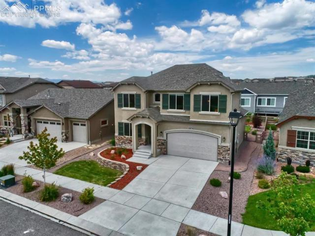 5974 Monashee Court, Colorado Springs, CO 80924 (#6760217) :: 8z Real Estate