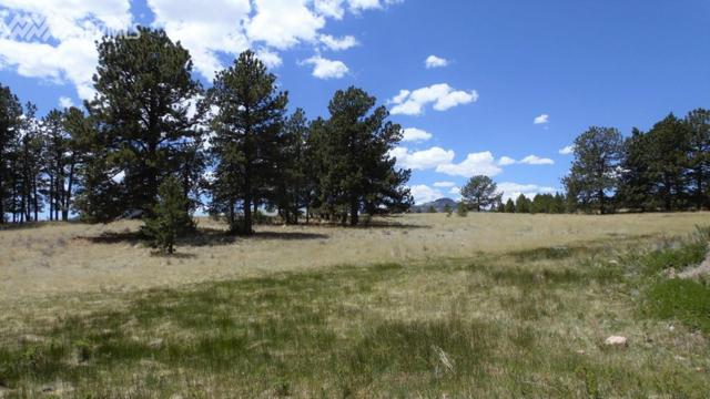 910 Pikes Trail, Guffey, CO 80820 (#6763519) :: Fisk Team, RE/MAX Properties, Inc.