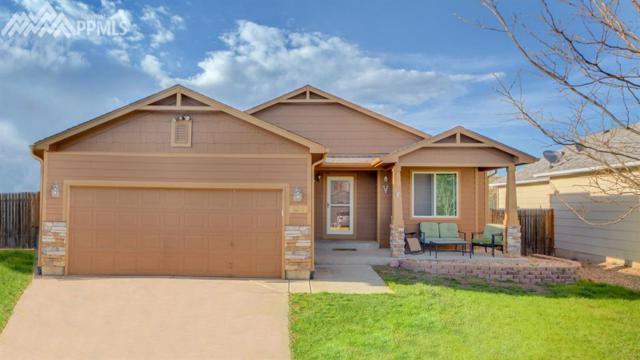 8431 Dassel Drive, Fountain, CO 80817 (#6764151) :: 8z Real Estate