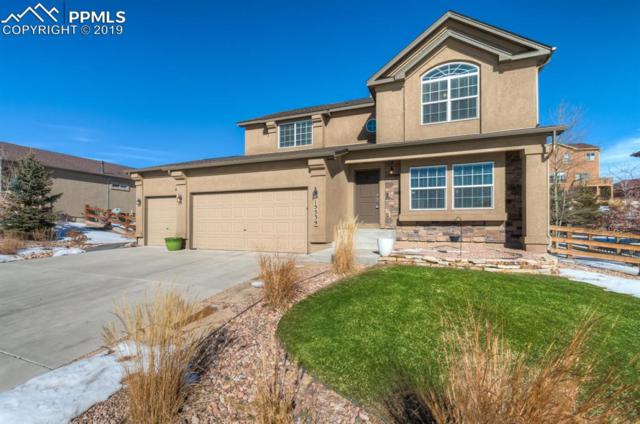 15539 Colorado Central Way, Monument, CO 80132 (#6766228) :: Action Team Realty