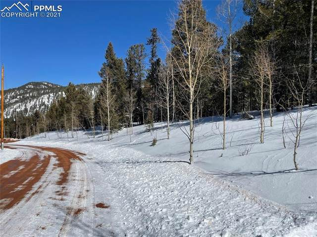 1444 Calcite Drive, Divide, CO 80814 (#6766522) :: The Gold Medal Team with RE/MAX Properties, Inc