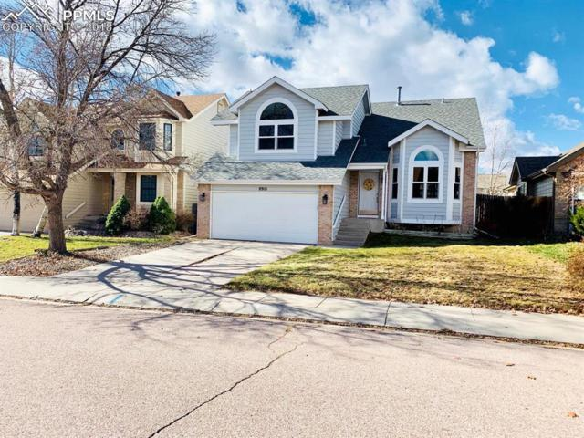 8910 Bellcove Circle, Colorado Springs, CO 80920 (#6767755) :: The Kibler Group