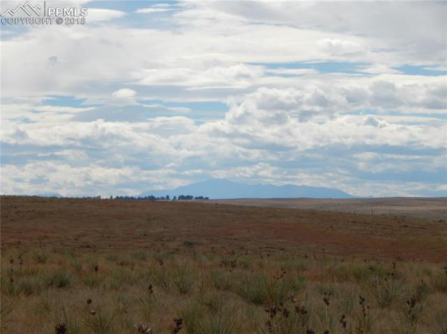37789 Sky View Circle, Kiowa, CO 80117 (#6767921) :: The Hunstiger Team