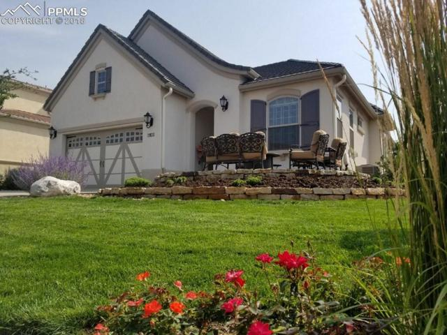 2933 Cathedral Park View, Colorado Springs, CO 80904 (#6770096) :: Action Team Realty