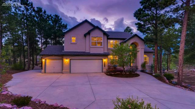 917 Pinenut Court, Colorado Springs, CO 80921 (#6778167) :: The Hunstiger Team