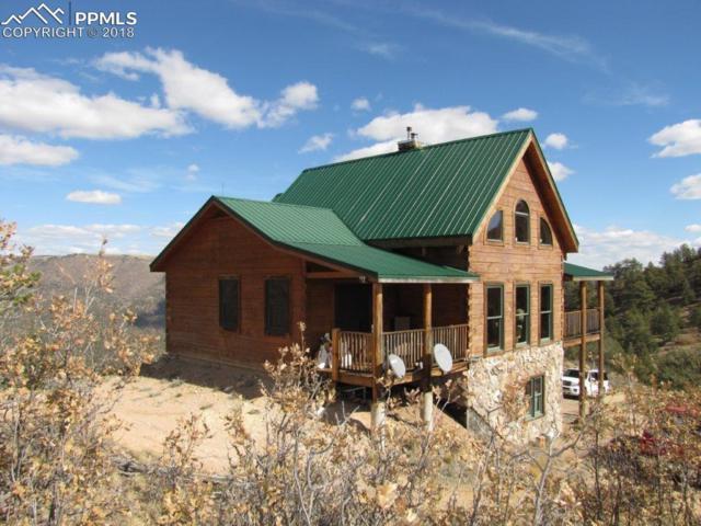 1203 Taylor Trail, Canon City, CO 81212 (#6781179) :: 8z Real Estate