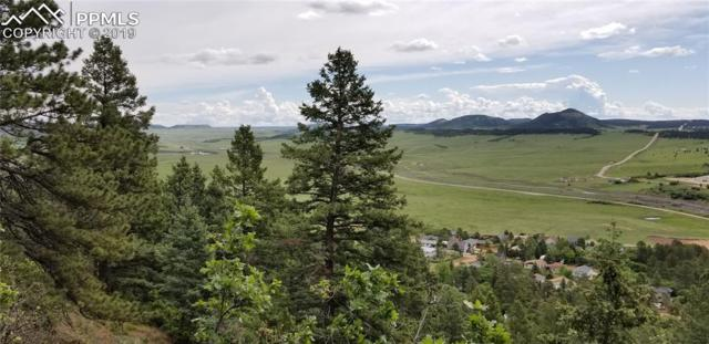 0 Pineview Street, Palmer Lake, CO 80133 (#6781353) :: Harling Real Estate