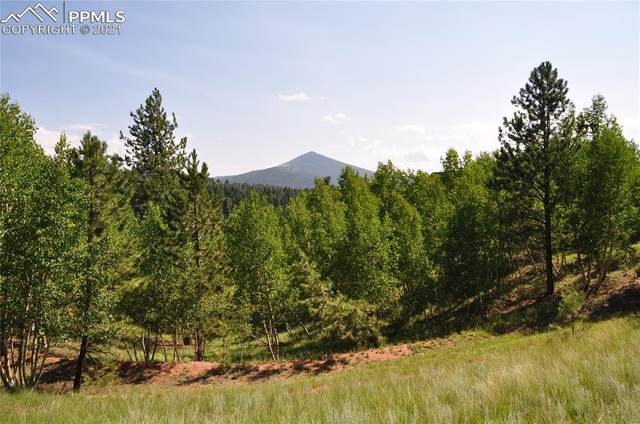 288 Princess Road, Cripple Creek, CO 80813 (#6787536) :: Tommy Daly Home Team