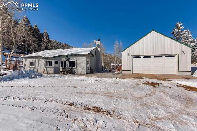 460 Spruce Drive, Florissant, CO 80816 (#6791437) :: Finch & Gable Real Estate Co.