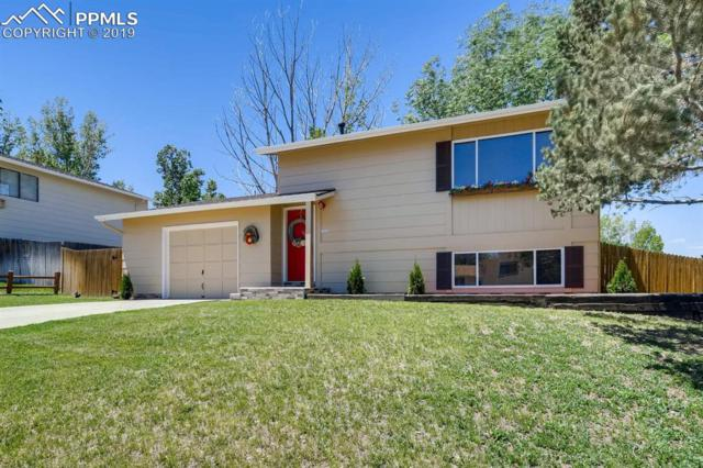 6560 White Water Lane, Colorado Springs, CO 80911 (#6792208) :: Perfect Properties powered by HomeTrackR