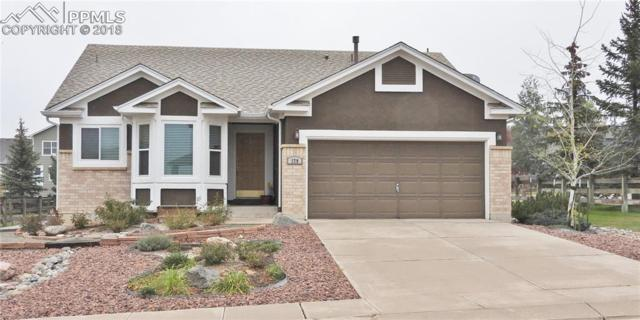 279 Misty Creek Drive, Monument, CO 80132 (#6793011) :: Action Team Realty
