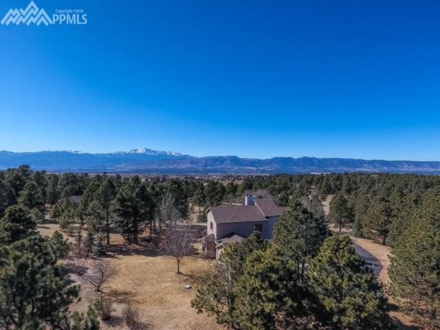 10705 Milam Road, Colorado Springs, CO 80908 (#6793828) :: RE/MAX Advantage