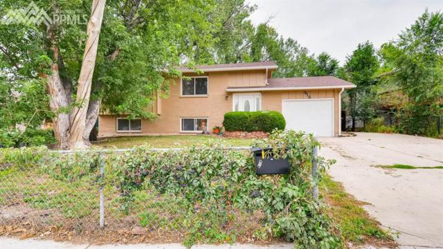 618 Rowe Lane, Colorado Springs, CO 80911 (#6794606) :: 8z Real Estate