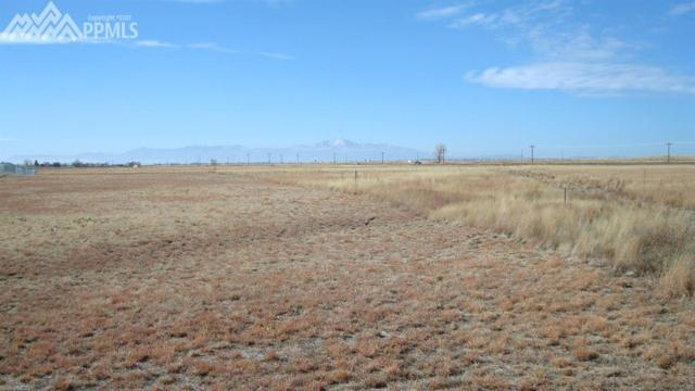16211 Mcconnell Court, Peyton, CO 80831 (#6795858) :: The Peak Properties Group