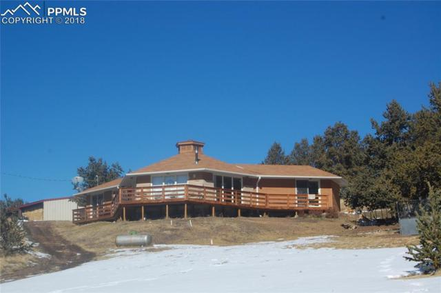 3000 County 59 Road, Guffey, CO 80820 (#6797634) :: The Hunstiger Team