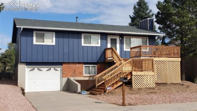 1118 Tulip Place, Colorado Springs, CO 80907 (#6799782) :: The Peak Properties Group