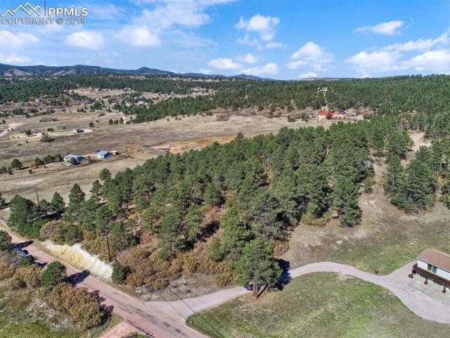 2360 Wakonda Way, Monument, CO 80132 (#6801441) :: 8z Real Estate